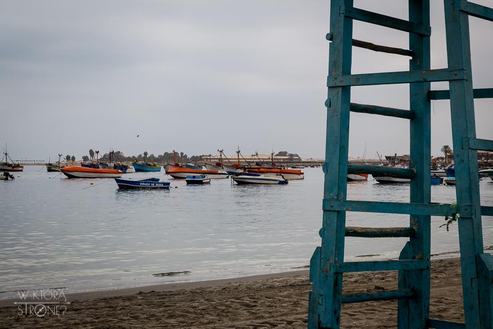 wktorastrone_pl_Peru_Paracas